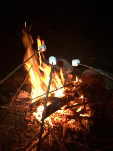 There's a fire pit at the campsite. Gather your firewood and cook some mallows!