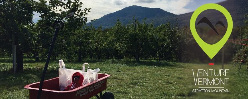 Apple orchard - a great place for a photo op!